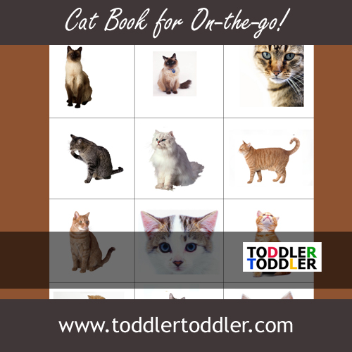 Toddlers, Activities, Games (www.toddlertoddler.com) :Make a cat book for on -the-go!
