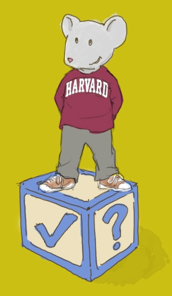 harvard preschool project hey toddler toddler fans will you help this study for 565